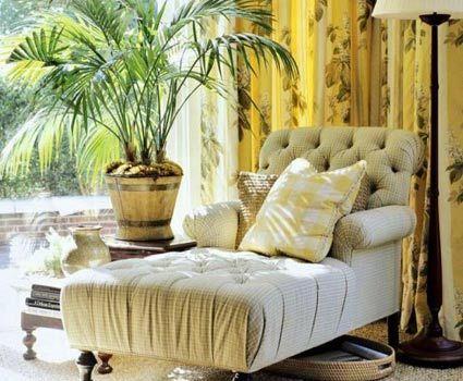 5 Головних ролей кімнатних рослин в сучасному інтер`єрі