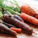 Хвороби моркви