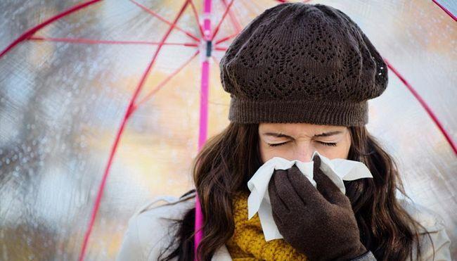 Чхання та нежить без температури