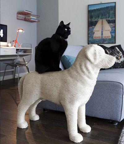 Дизайн для котів. Куточок для кота