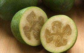 Фейхоа - корисні властивості: користь і шкода фрукта фейхоа