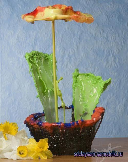 Фотографії рідких квітів Джека Лонга