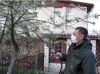 Ефективні способи боротьби з шкідниками і хворобами саду