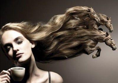 Кінський шампунь: вдалий маркетинговий хід, що породив масовий психоз
