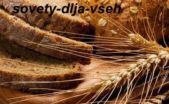 Чи можна їсти хліб? Незвичайні факти про звичному продукті