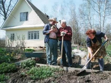 Роботи на травневі свята в саду і на городі