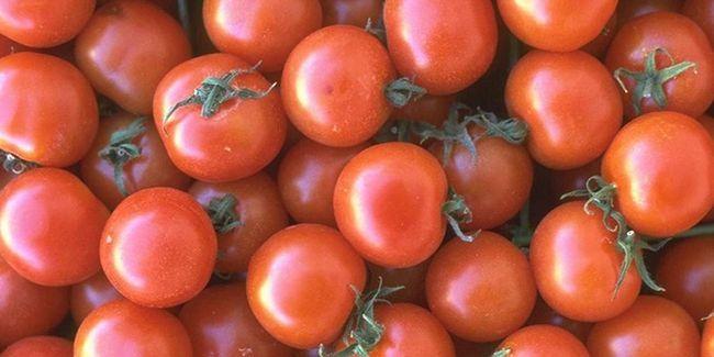 Салат з помідорів на зиму в банках