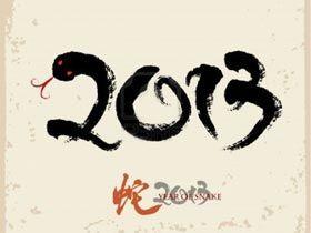 Сценарій на новий 2013 рік змії. Новорічні конкурси, сценки, ігри на новий рік чорної водяній змії 2013!