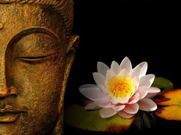 Заповіді будди